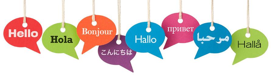 corsi di lingua personalizzati